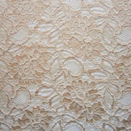 Corded Lace CHAMPAGNE