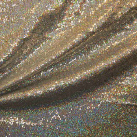 All Over Stretch Metallic Sequin Holo SILVER